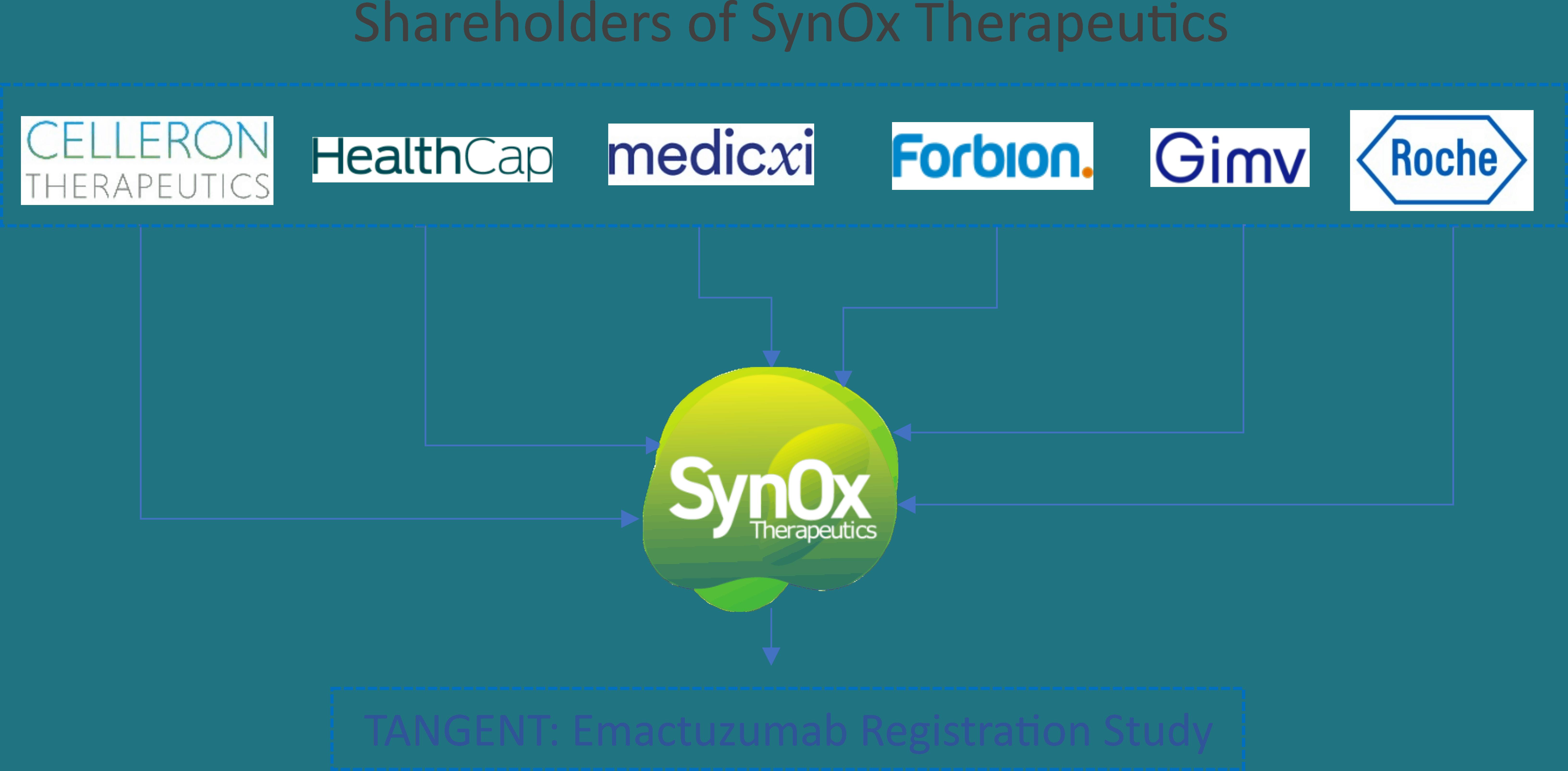 2. SynOx Shareholders
